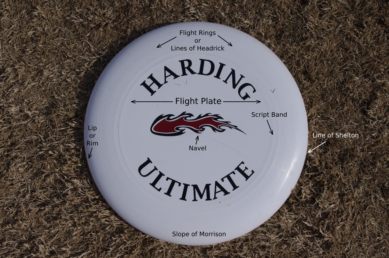 Parts Of A Disc Ozark Ultimate